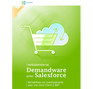 WhitePaper Thumb Demandware and Salesforce FR