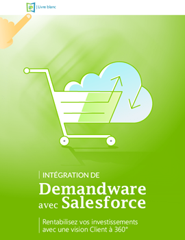 Integrating Demandware and Salesforce whitepaper fr